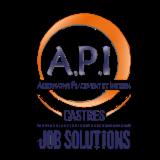 A.P.I. CASTRES