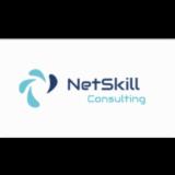 NETSKILL CONSULTING