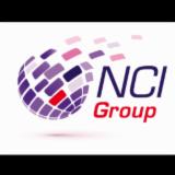 NET CONSULT INTERNATIONAL