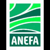 Logo de l'entreprise ANEFA 49