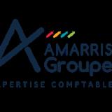 AMARRIS CONSEIL Logo