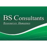BS CONSULTANTS
