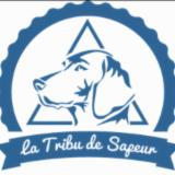 LA TRIBU DE SAPEUR