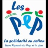 ASSOCIATION REGIONALE DES PEP PAYS DE LA LOIRE (AR PEP PDL)