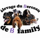 ELEVAGE DU BERCEAU DE B. FAMILY