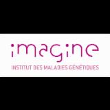 IMAGINE INST MALAD GEN NECKER MALADES