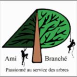 AMI BRANCHE