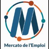 LE MERCATO DE L EMPLOI