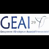 G.E.A.I 29