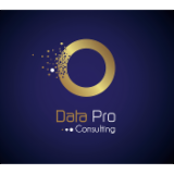 DATA PRO CONSULTING