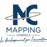 MAPPING CONSULTING