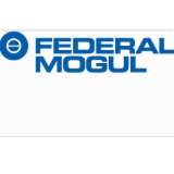 Federal-Mogul Ignition Products