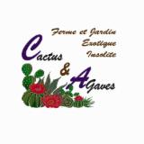 CACTUS ET AGAVES