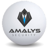 SAS AMALYS SECURITY