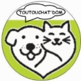 TOUTOUCHAT'DOM