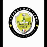 LEZARDS MARTIAUX DE NIMES TAEKWONDO