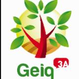GEIQ3A