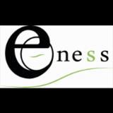 E-NESS