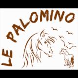 LE PALOMINO Centre Equestre