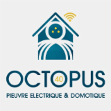 OCTOPUS 40