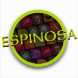 ESPINOSA CHRISTIAN ET FILS