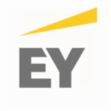 EY SERVICES FRANCE