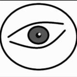 SCM ambares vision