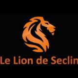 LION DE SECLIN
