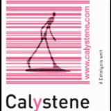 CALYSTENE SA