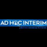 AD HOC INTERIM SAS
