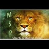 M S P