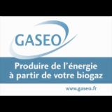 GASEO DEVELOPPEMENT
