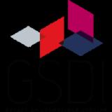 GSDI INTERNATIONAL