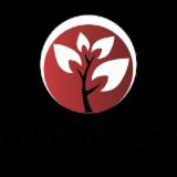 CONSULT-ECO