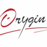 ORYGIN CONSEIL
