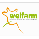 WELFARM - Protection mondiale des animaux de ferme