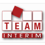 TEAM INTERIM INSERTION