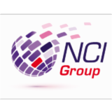 NET CONSULT INTERNATIONAL