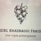 KHADRAOUI farid